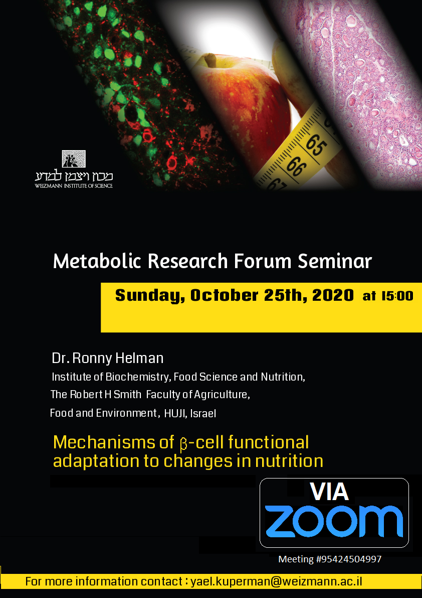 25/10/2020: Weizmann metabolic (online) Seminar