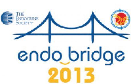 EndoBridge 2013