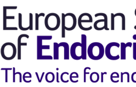 ESE 2022 Awards open – Nominate now